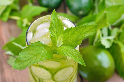 HCG Diet Water Recipe cucumber mint lemon lime in glass